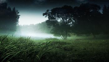 First Class Leadership: Forging Through the Fog